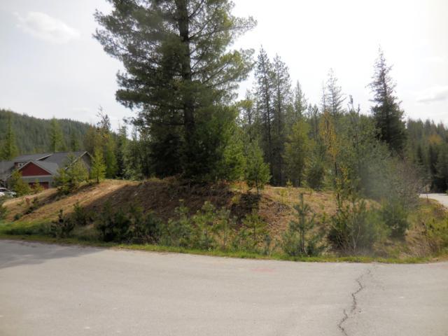 200 Silver Saddle Ct, Pinehurst, ID 83850 (#19-824) :: Northwest Professional Real Estate
