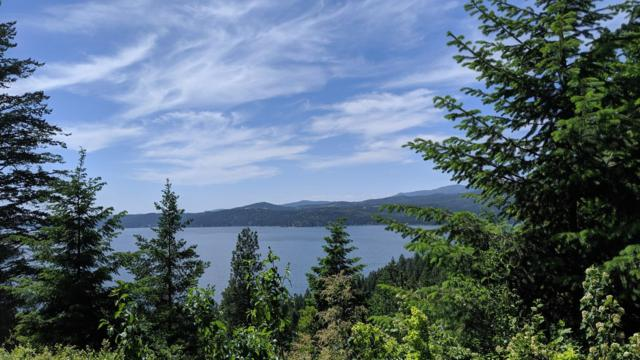 NKA Hanson Rd, Harrison, ID 83833 (#19-883) :: Coeur d'Alene Area Homes For Sale