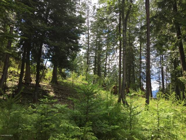 Blk 8 Lot 7 White Cloud Rd C18, Sandpoint, ID 83864 (#20-10672) :: Embrace Realty Group