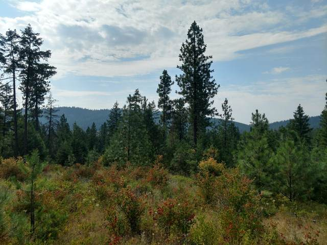 Greensferry (15Ac) Rd, Coeur d'Alene, ID 83814 (#20-1420) :: Embrace Realty Group