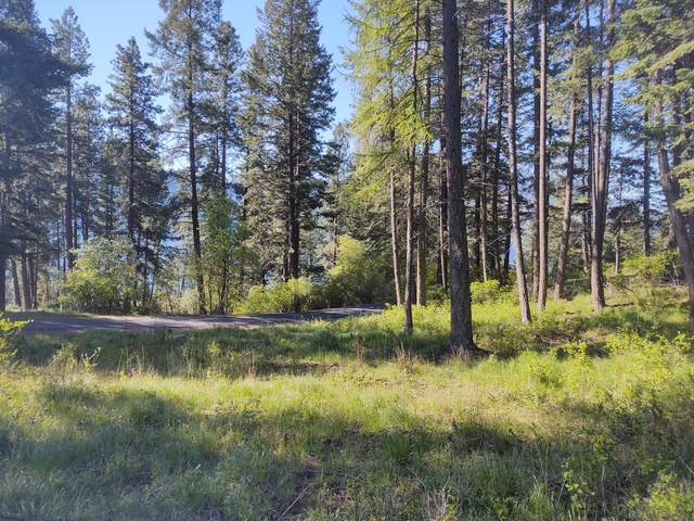 Lt 5 Bk D Glacier Loop Rd, Bayview, ID 83803 (#20-4367) :: ExSell Realty Group