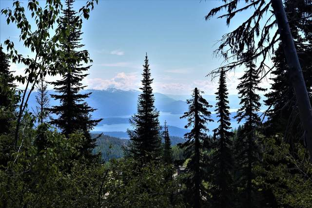 Blk 5 Lot Wyvern Way, Sandpoint, ID 83864 (#20-5827) :: Mall Realty Group