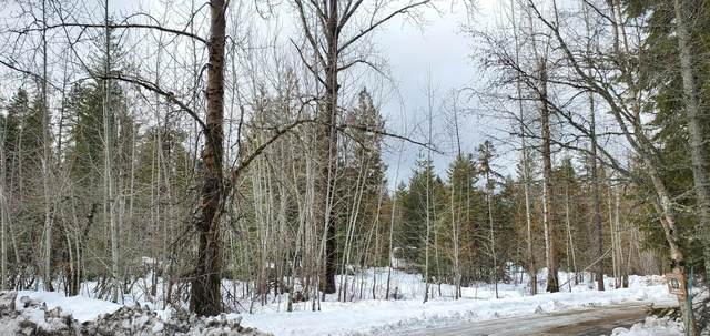Nka Lot 2, Sagle, ID 83860 (#20-688) :: CDA Home Finder