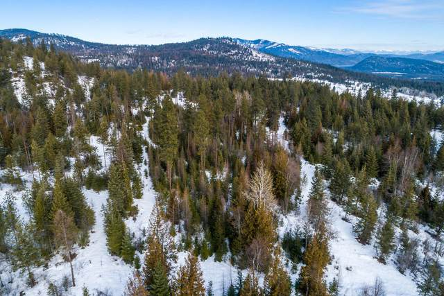 NNA Hoodoo Mountain Road, Priest River, ID 83856 (#20-725) :: Mall Realty Group