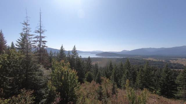 nna E4 S Idaho Club Drive, Sandpoint, ID 83864 (#20-835) :: Prime Real Estate Group