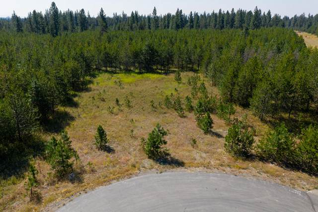 NKA W Chrisshan Ct, Rathdrum, ID 83858 (#20-8357) :: Five Star Real Estate Group