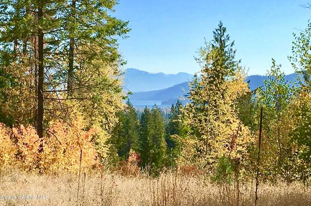 25 Mariposa, Sandpoint, ID 83864 (#21-1584) :: Embrace Realty Group