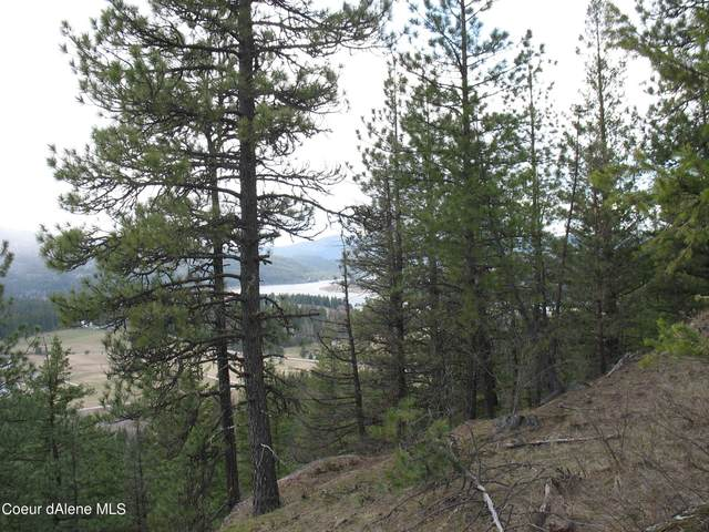 NNA E Dunromin Rd., Priest River, ID 83856 (#21-2919) :: Coeur d'Alene Area Homes For Sale