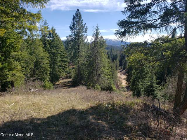 Parcel B Pleasant Valley Loop, Naples, ID 83847 (#21-3192) :: Prime Real Estate Group