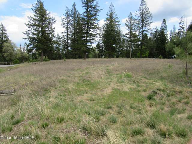 L256 Lower Pasture Road, Harrison, ID 83833 (#21-4196) :: Team Brown Realty
