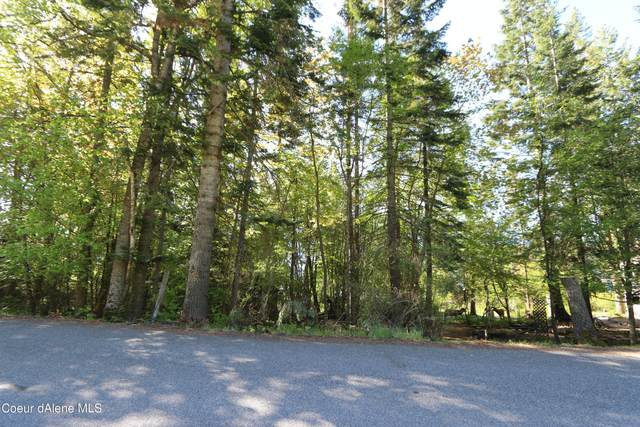 L2 Bayview, Bayview, ID 83803 (#21-6085) :: Amazing Home Network