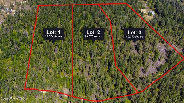 L3 Sunset Hills Rd, Athol, ID 83801 (#21-9409) :: Mall Realty Group