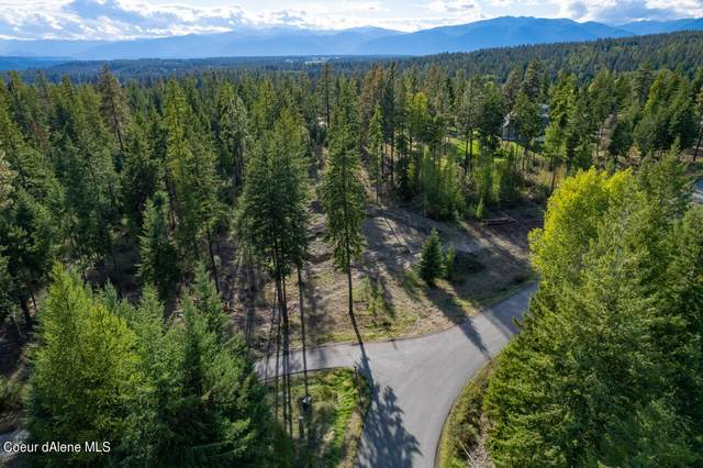 Lot 31 Wood Duck Ln, Bonners Ferry, ID 83805 (#21-9973) :: Team Brown Realty