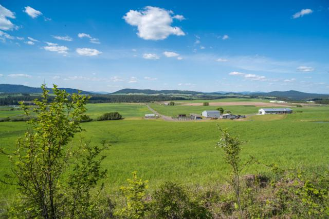 141 Old Hwy 5, Plummer, ID 83851 (#17-2840) :: Prime Real Estate Group