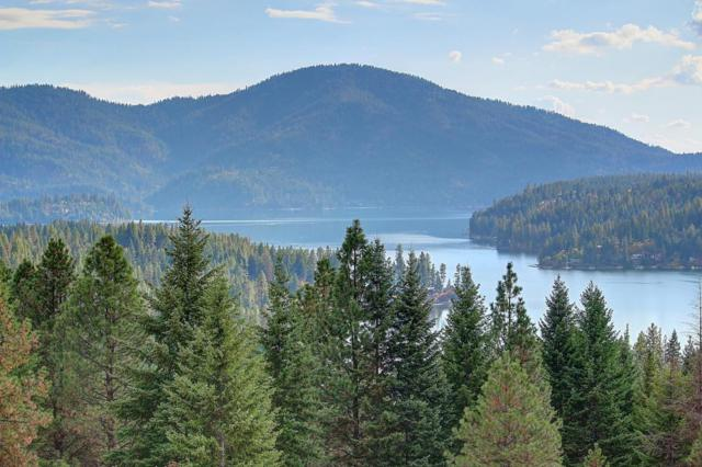 16529 N Triangle 7 Rd, Hayden, ID 83835 (#17-9043) :: Prime Real Estate Group