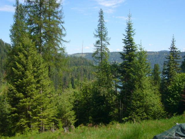 NNA W Sargent Loop, Worley, ID 83876 (#18-3436) :: CDA Home Finder