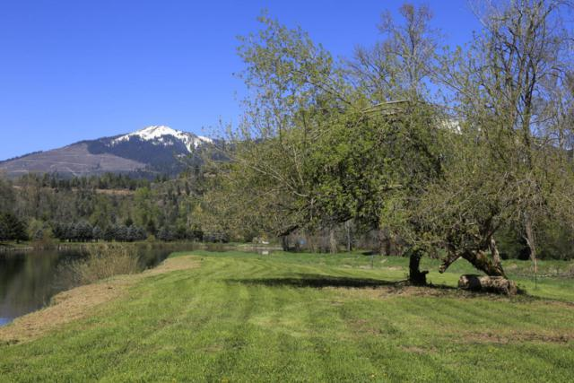 Lot 46 Whitetail Flats 2nd Add, St. Maries, ID 83861 (#18-3841) :: The Spokane Home Guy Group