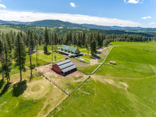 181 Misty Mountain Trail, Plummer, ID 83851 (#18-5681) :: Link Properties Group