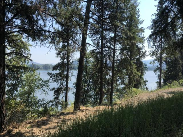 Parcel 23 Round Lake Rd, St. Maries, ID 83861 (#18-8335) :: Link Properties Group