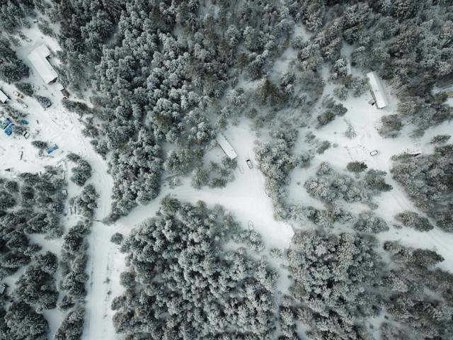 924 Torrens Trail, Spirit Lake, ID 83869 (#19-1249) :: Northwest Professional Real Estate