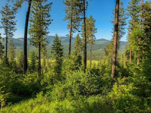 NKA Forest Way, Blanchard, ID 83804 (#19-453) :: Northwest Professional Real Estate