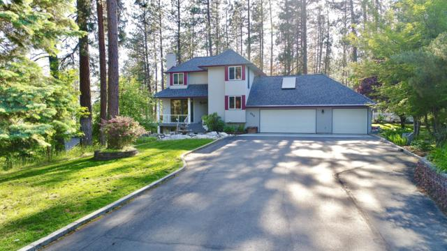 520 S Shore Pines Rd, Post Falls, ID 83854 (#19-931) :: Kerry Green Real Estate