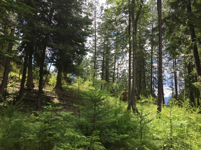 Nna White Cloud Drive  C18, Sandpoint, ID 83864 (#20-6322) :: Northwest Professional Real Estate