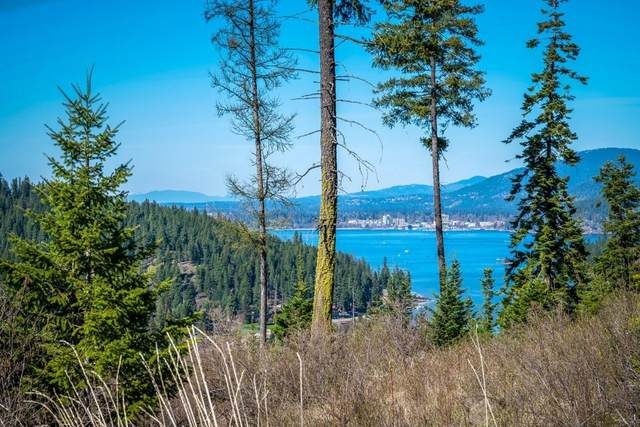5236 S Tumblestone Dr, Coeur d'Alene, ID 83814 (#21-972) :: Mall Realty Group