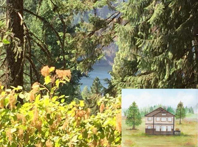 0 Waterview, Coeur d'Alene, ID 83814 (#18-8662) :: Team Brown Realty