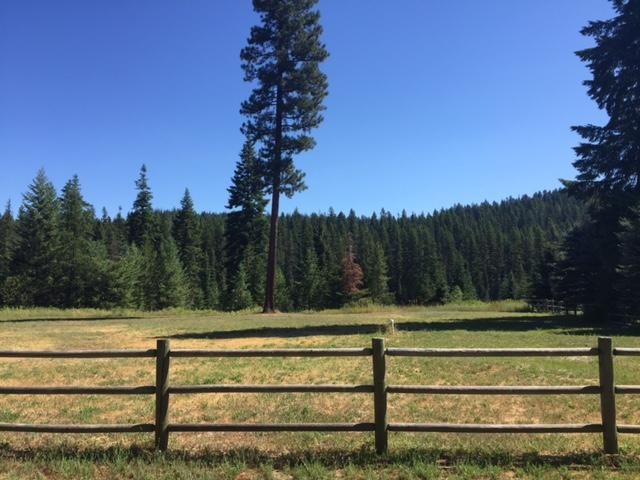 Lot 8 Shady Pines Addn, Priest Lake, ID 83856 (#17-8041) :: Prime Real Estate Group