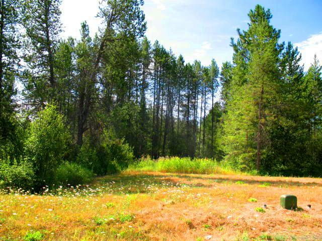 Lot 8 Northview Dr, Sandpoint, ID 83864 (#18-1034) :: The Jason Walker Team