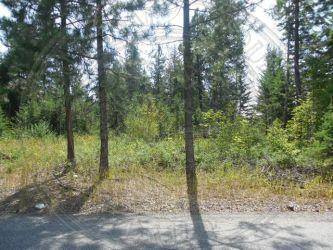 NNA Lot 4 W Vermont St, Spirit Lake, ID 83869 (#18-10589) :: Team Brown Realty