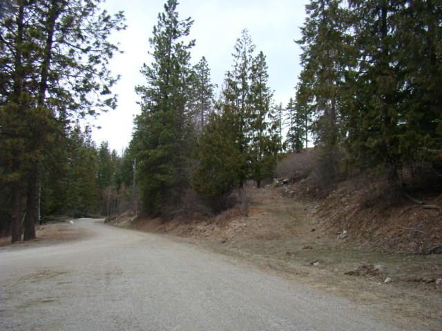 Scotch Pine Drive, Sandpoint, ID 83864 (#18-3350) :: Prime Real Estate Group