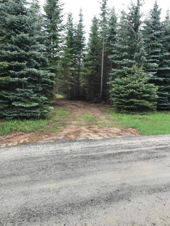 NNA Cougar Rd, Bonners Ferry, ID 83805 (#18-5610) :: Team Brown Realty