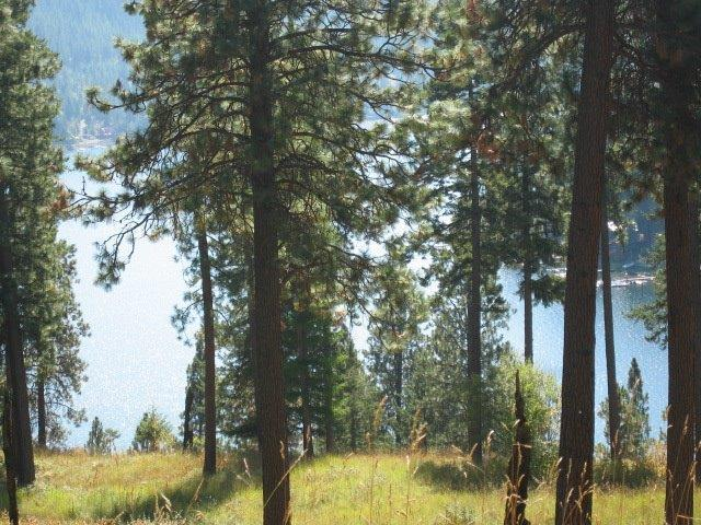 Lot 19 Rock Creek Ridge At Sunup Bay, Worley, ID 83876 (#18-6683) :: Link Properties Group