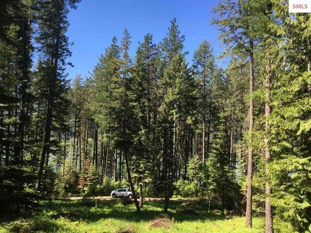 Lot 16 Bel-Tane, Sagle, ID 83860 (#18-6711) :: Team Brown Realty