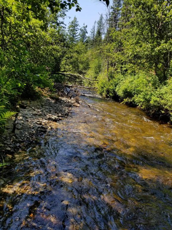 NKA Creekside Dr, Priest River, ID 83856 (#18-8438) :: The Stan Groves Real Estate Group