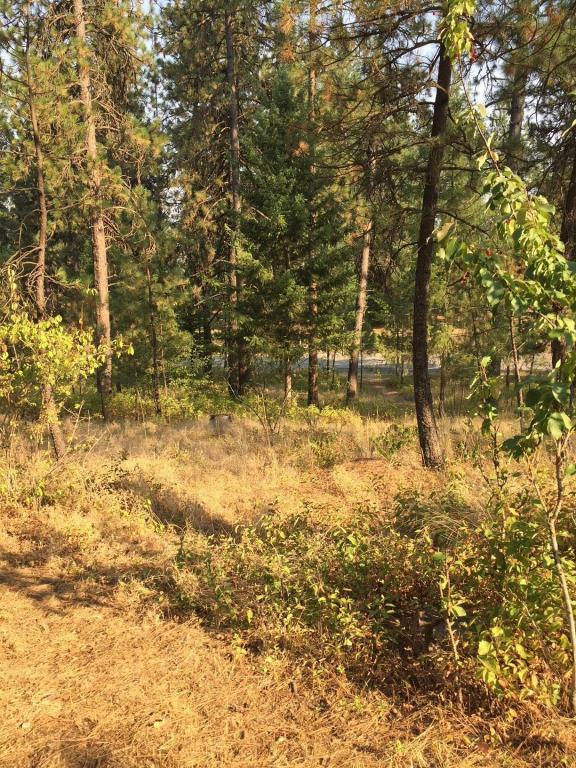 Lot 5 N Chase Rd, Rathdrum, ID 83858 (#18-9214) :: Link Properties Group