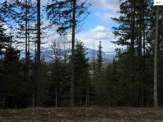 NKA E Sunnyside Road (6.30 Acres), Sandpoint, ID 83864 (#18-9571) :: Team Brown Realty