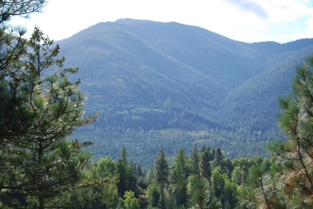 LOT 17 Pinnacle Cir, Bonners Ferry, ID 83805 (#18-96) :: Prime Real Estate Group