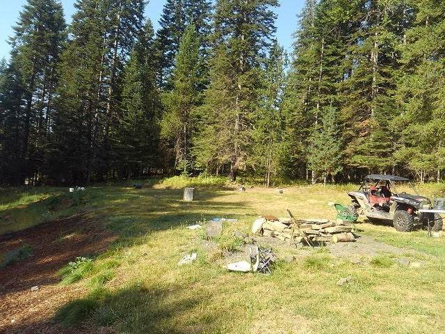 1484 Elkhorn Meadows, Fernwood, ID 83830 (#19-11755) :: Mandy Kapton | Windermere