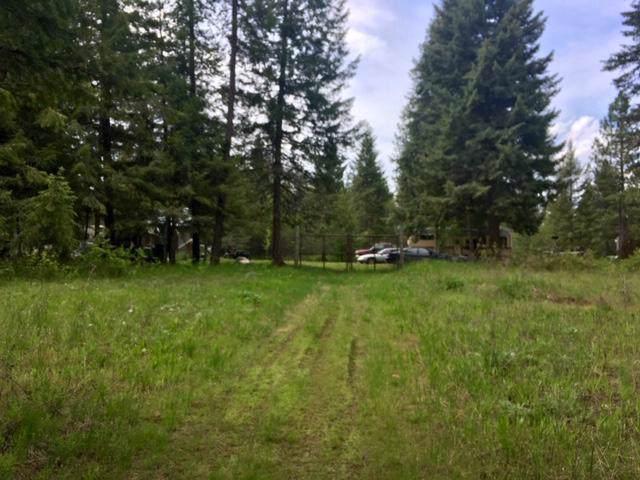 491 Pine View Ln, Spirit Lake, ID 83869 (#19-12379) :: Mandy Kapton | Windermere