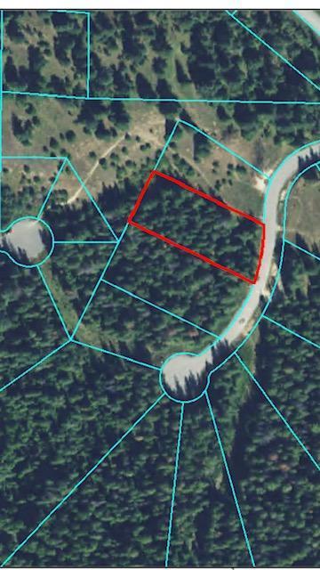 122 Trail Blazer Ct, Pinehurst, ID 83850 (#19-2147) :: CDA Home Finder