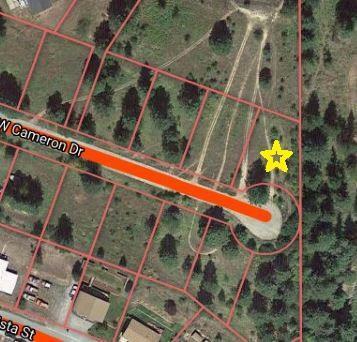 NKA Upper Drive Lot 10 Blk 1, Osburn, ID 83849 (#19-2253) :: Mandy Kapton | Windermere