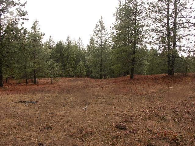Lot 5 Pinnacle Circle, Bonners Ferry, ID 83805 (#19-3465) :: Team Brown Realty