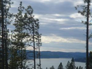 Sunset Terrace Lot 4, Harrison, ID 83833 (#19-3504) :: Team Brown Realty