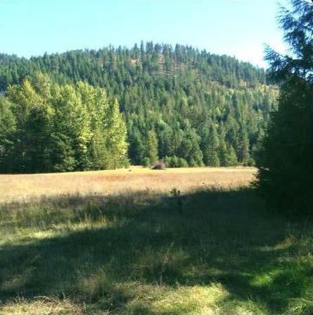 134 Nordic Sky Rd, Sagle, ID 83860 (#19-4365) :: Kerry Green Real Estate