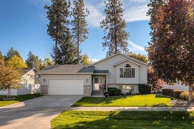 1166 W Sycamore Ave, Coeur d'Alene, ID 83815 (#19-522) :: Team Brown Realty