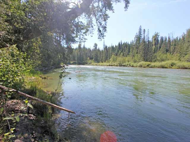 NNA Riversong/Dirks Rds, Priest River, ID 83856 (#19-9057) :: Team Brown Realty