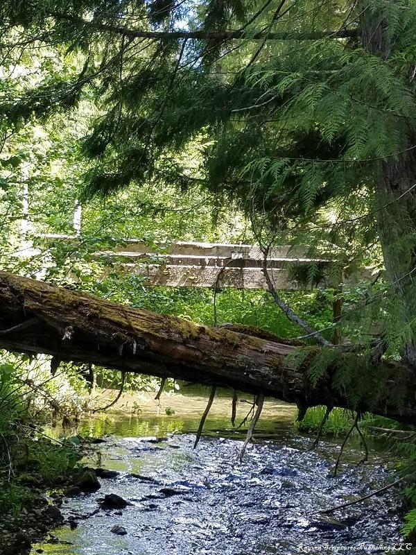 NNA Charli Creek, St. Maries, ID 83861 (#19-9087) :: Link Properties Group
